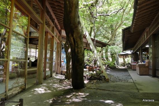 袋田の滝の土産店