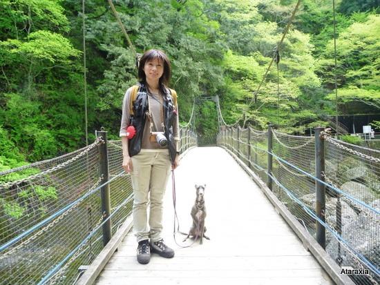 袋田の滝吊り橋